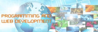 Website development and programming